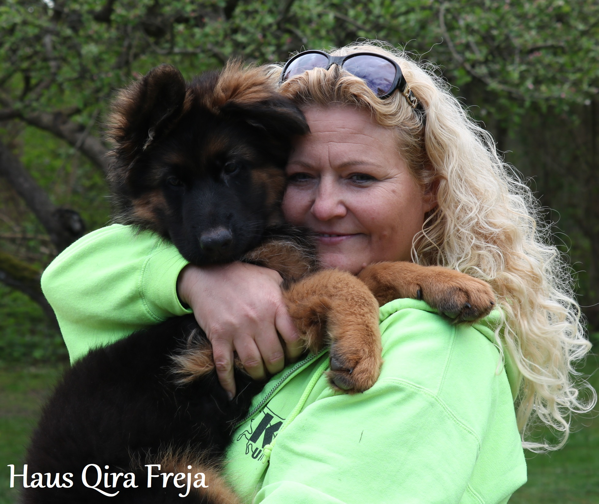 *UPDATE* Freja er udstationeret! – Haus Qira Freja på 11 uger, er nu klar til sin nye familie!