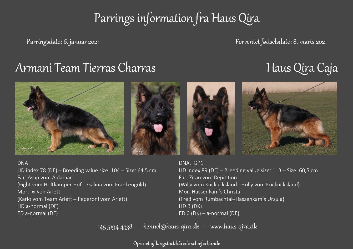 Haus Qira Caja er parret med Armani Team Tierras Charras